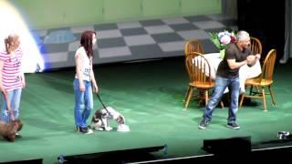 getlinkyoutube.com-puppy cesar millan ahoy