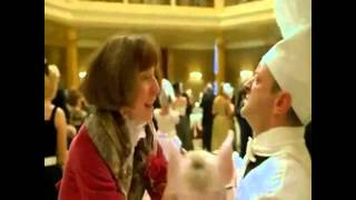 getlinkyoutube.com-Babe pig in the city ballroom rescue