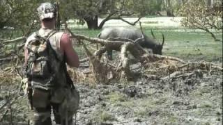 getlinkyoutube.com-SWAMP HOGS ( Bow Hunting the Top End Australia )