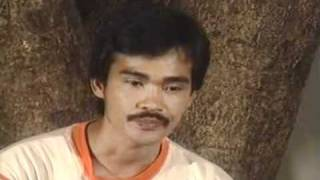 A true to life story of Ka Aris: In the Bowels of the CPP-NPA  Part 1