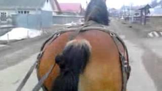 getlinkyoutube.com-cai de vanzare judetul neamt sat luminis comuna piatra-soimului