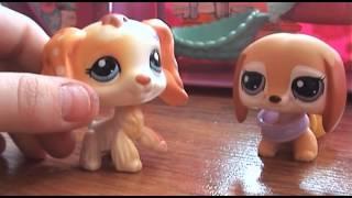 getlinkyoutube.com-Littlest Pet Shop Miłość jest jak magia część III