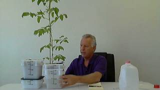 getlinkyoutube.com-Introducing our newest hydroponic technology inovation: the Direct Top Feed Hydroponic System