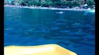 getlinkyoutube.com-Marathon Ohrid 2008
