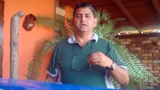 getlinkyoutube.com-EL AJO EN LA CRIA DE POLLOS