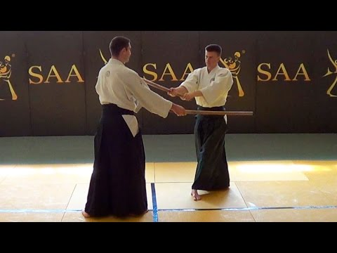 Aikido Distance Learning | Progress Cycle 1