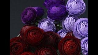 getlinkyoutube.com-Шикарные бумажные цветы Susan Beech. Мастер-класс.