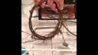 getlinkyoutube.com-Grundgerüst zum Weihnachts- Kranz aus Zweigen basteln