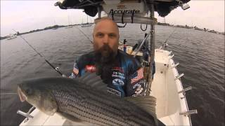 getlinkyoutube.com-How to catch MORE STRIPED BASS! Cool Tips for BIGGER STRIPERS! Simrad/Accurate-Team Old School.