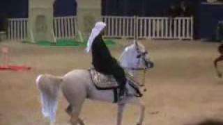 getlinkyoutube.com-الخيل الصعيدي بمهرجان دبي