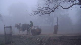 getlinkyoutube.com-Vrindavan 2014 mist