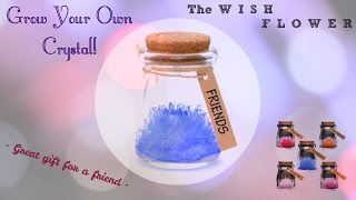 getlinkyoutube.com-Making A Crystal Wish Flower