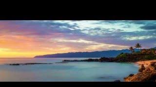 getlinkyoutube.com-Post Malone feat. 24hrs - Malibu (Music Video)