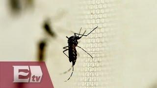 getlinkyoutube.com-¿Que es el virus de Zika, es peligroso? / Atalo Mata