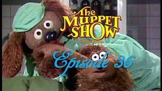 getlinkyoutube.com-The Muppet Show Compilations - Episode 36: Veterinarian's Hospital (Season 2)