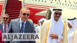 Erdogan visits Qatar to help resolve Gulf crisis