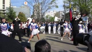 getlinkyoutube.com-Kチャンパ '14春 早慶レガッタ浅草寺パレード 3