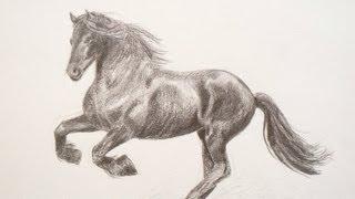 getlinkyoutube.com-Cómo dibujar un caballo - Arte Divierte