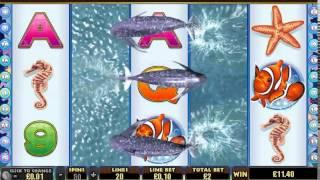 getlinkyoutube.com-dolphin reef slot machine