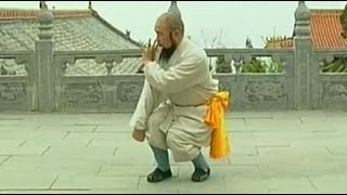 getlinkyoutube.com-Shaolin big defensive intent gate kung fu (chang hu xinyi men quan), 1/3