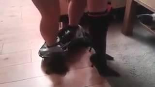 Video Porno xxx