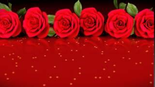 getlinkyoutube.com-Fondo Video Background Full HD Desfile de Rosas