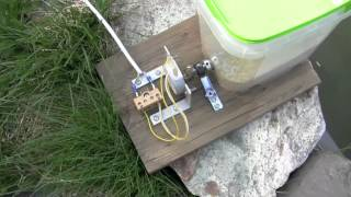 getlinkyoutube.com-Homemade fish food feeder for aquarium or pond