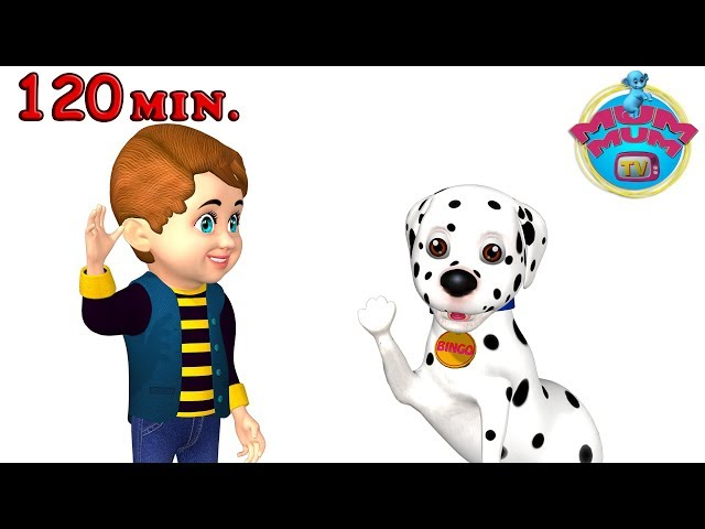Bingo Dog Song - Best Nursery Rhymes Songs for Children