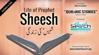 Events Of Prophet Sheesh's Life (Urdu)