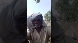 Jabardasti comedy 2018 bhatar aihe holi ke bad