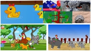 getlinkyoutube.com-รวมเพลงเด็ก เพลงเป็ดอาบน้ำในคลอง ช้าง ก ไก่ เต่า ลิง แมงมุม ฟังกันยาวๆ เกือบ 30 นาทีเลยจ๊า