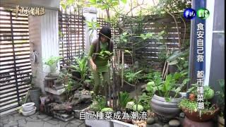 0321華視新聞雜誌-種菜潮 客廳變菜園