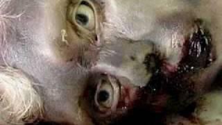 getlinkyoutube.com-kisah nyata azab kubur