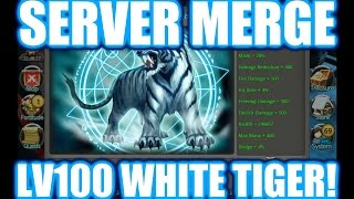 getlinkyoutube.com-Taichi Panda | Server Merge | LV100 White Tiger Demigod!