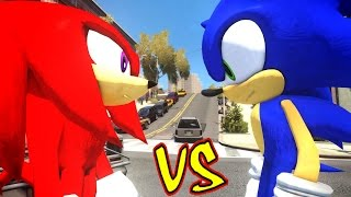 Sonic VS Knuckles the Echidna