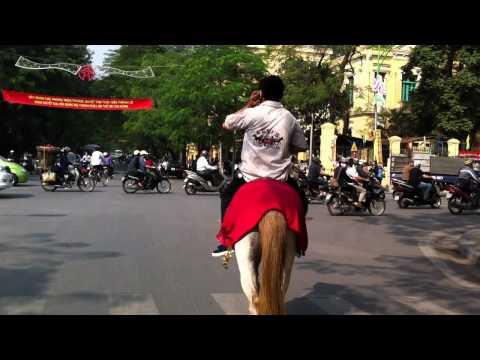 Cưỡi ngựa trên phố Lý Thường Kiệt