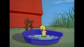 getlinkyoutube.com-Tom and Jerry, 77 Episode - Just Ducky (1953)