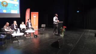 De europeiska kulturinstitutionernas framtid - Reflektioner