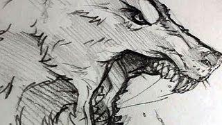 getlinkyoutube.com-How to Draw a Wolf Head, Werewolf Head, Pencil Work, Step by Step