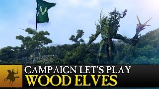Total War: WARHAMMER - Realm of the Wood Elves Campaign Let's Play