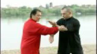 getlinkyoutube.com-Wing Chun training with William Cheung