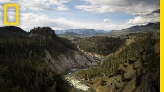 The Best of Yellowstone   America's National Parks