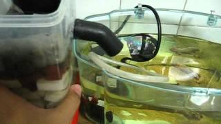 getlinkyoutube.com-DIY mini canister filter