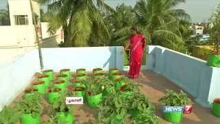 getlinkyoutube.com-How to Grow Vegetables in a Container or Pots on the Terrace | Poovali | News7 Tamil