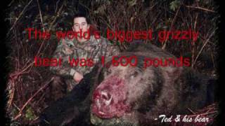 getlinkyoutube.com-The World's Biggest Grizzly Bear