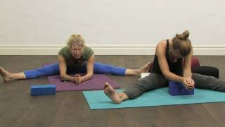 getlinkyoutube.com-60 minutes Yin Yoga for the Spine.