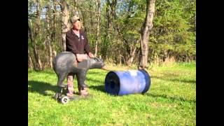 getlinkyoutube.com-Tip: Black Bear Hunting - Shot Placement