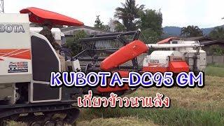 getlinkyoutube.com-KUBOTA-DC95GM เกี่ยวข้าวนาแล้ง แม่สรวย เชียงราย (1)