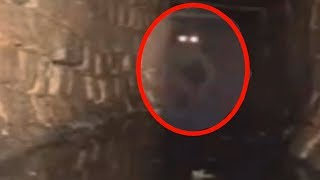 getlinkyoutube.com-5 Mysterious Creatures Caught On Camera & Spotted In Real Life!