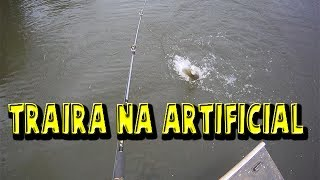 getlinkyoutube.com-Pescaria de Traíra - Isca Artificial de Superfície e Spinner bait.